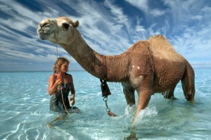After walking almost 1,700 miles across the heart of the Australian Outback, Davidson and her camels arrived at the Indian Ocean. Never having seen a body of water larger than a puddle before, her camels were mesmerized. Photograph by Rick Smolan/Against All Odds Productions